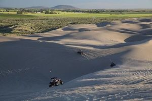 Buggies Lanzarote - 23956 news