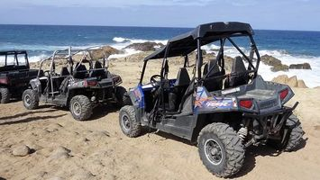 Rent A Buggy - 55172 bestsellers