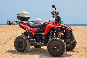 Rent A Buggy - 28697 news